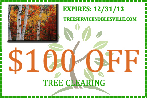 Tree Service Coupons Noblesville IN